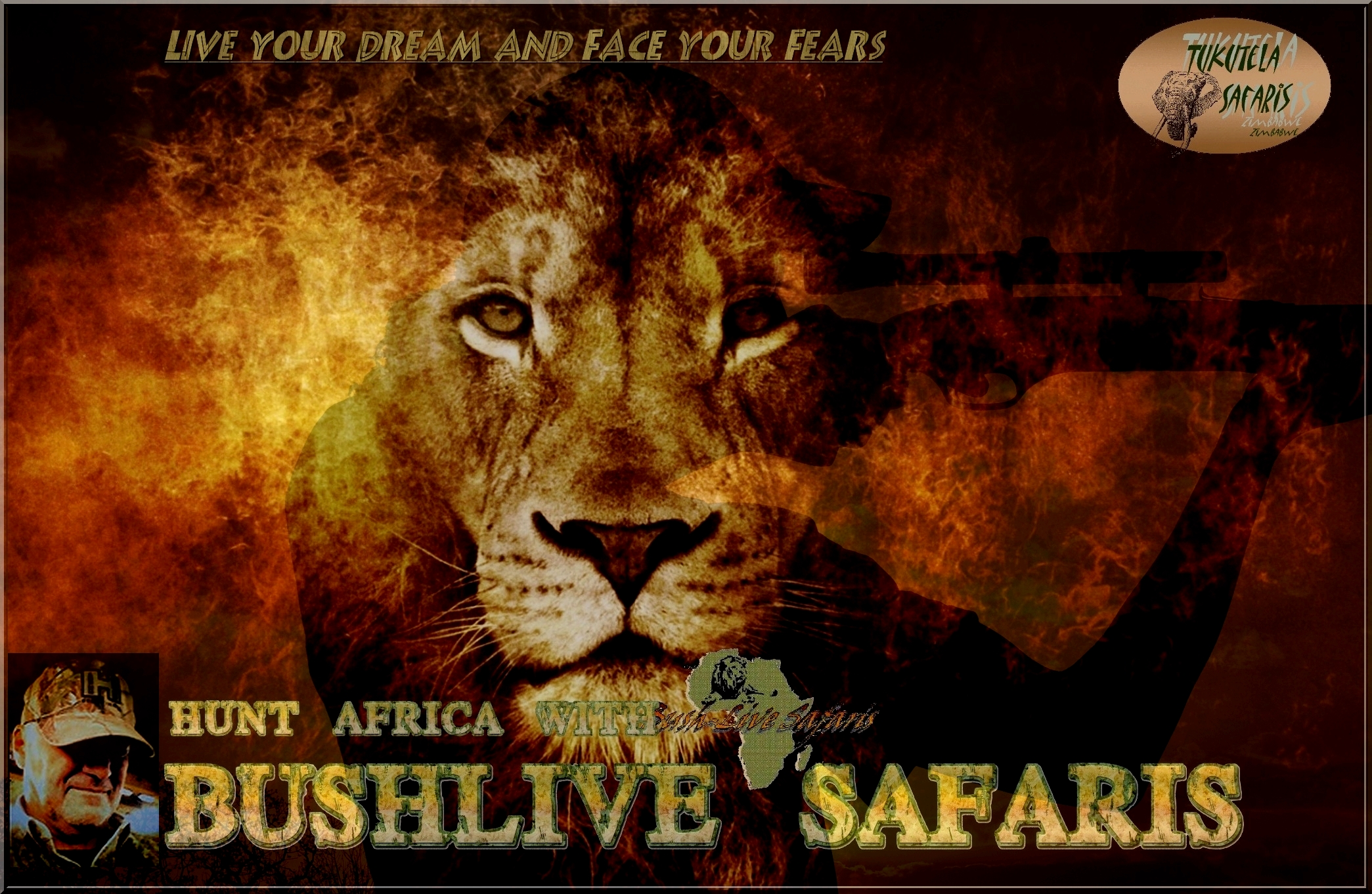 Bushlive Safaris